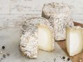 Fromage : Pampillon